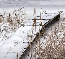 Boat Dock in Winter on a Lake in Yankee Springs by Randall Nyhof