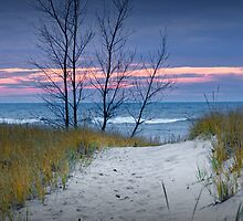 Sunset Photograph of Trees and Dune with Beach Grass at Holland Michigan No. 0241 by Randall Nyhof