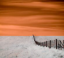 Bring me the horizon by Rhana Griffin