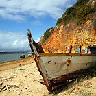 Rusting on the beach by A3Art