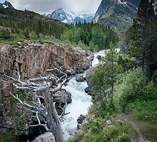 Waterfall in Glacier National Park by Randall Nyhof