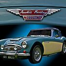 Well Heeled Healey  by Mike Capone