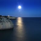 Moonlit Coast by A3Art