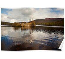 Loch an Eilein Castle, Scotland Poster