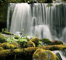 #1088 Water Falls In Color by MyInnereyeMike
