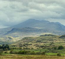 Scafell From Birker Fell by Jamie  Green