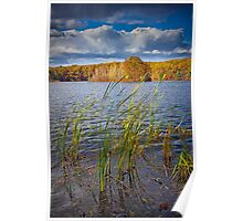 Hall Lake in Autumn No 0086 Poster