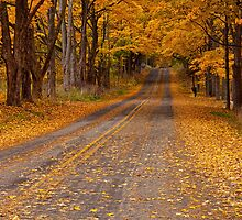 Fall Rural Country Road No 133 by Randall Nyhof