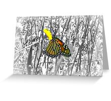 Monarch & Dandelion Greeting Card