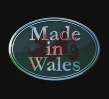 Made in Wales and proud Kids Clothes