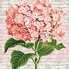 Hydrangea Vintage Dream by GirlyGirl