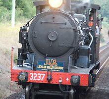 Vintage Steam Train, Coffs Harbour, NSW by Adrian Paul