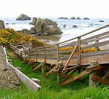 Stair Steps To Bandon Beach...Bandon, Oregon by trueblvr