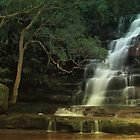 Somersby Falls - Brisbane Water National Park - Gosford NSW by Gary Blackman