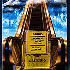 The Escalator to Heaven by Richard  Gerhard