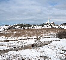 Cape Forchu winter scene by Shawn Bourque
