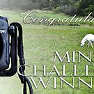 Mini-Challenge Winner D90 by Susana Weber