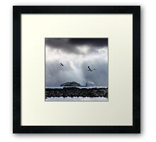 Seeking to Follow. Framed Print