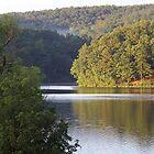 MUUSA Lake Sunnen by Rogere0829