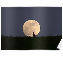 Moongazer Poster