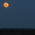 Super Moon Landscape 2012 by Rogere0829