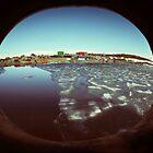 Mawson base, Antarctica by Peter Hammer