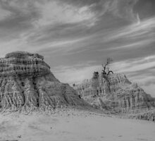 Mungo National Parkin B&W by warren dacey