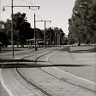 Tram Track by Debbie-anne