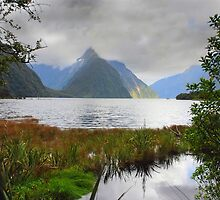 Milford Sound, New Zealand by DavidsArt