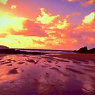 Golden Sunset by Joanna Jeffrees