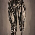 Muscle anatomy of legs by DujkaM