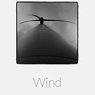 Wind - iPhoneography by Marcin Retecki