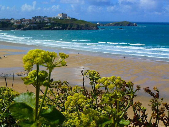 Tolcarne Beach, Newquay by davidjedwards