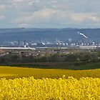 Teesside Vista by davidjedwards
