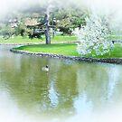 PeacefulScene by Kathleen Struckle