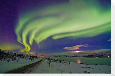 Auroras are everywere by Frank Olsen