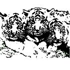 Three Baby Tigers  by vicky  hutton