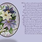 Clematis Greeting Card by taiche
