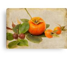 Autumn Fruit Canvas Print