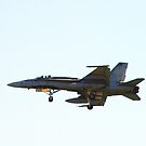 F-18 by Al Williscroft