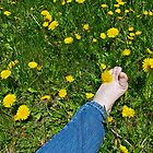 Bare Footing by Carolyn Clark