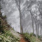 Through the Mist by Julia Ott