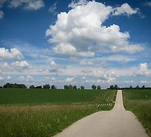 country lane with cumulus by NafetsNuarb