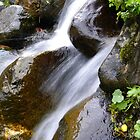 Waterflow by Fattom25