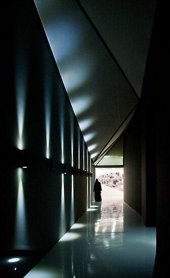 Shed light by Hélène David-Cuny