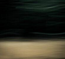 West Winds by Su Walker