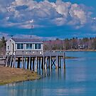 Springtime in Maine by Mike Griffiths
