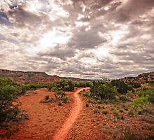 Path to Glory by Charles Dobbs Photography