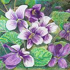 Violets by Sally O&#x27;Dell