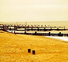 Golden Beach by wishfulTpress